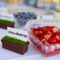 Fruit trays and miniature garden pot labels